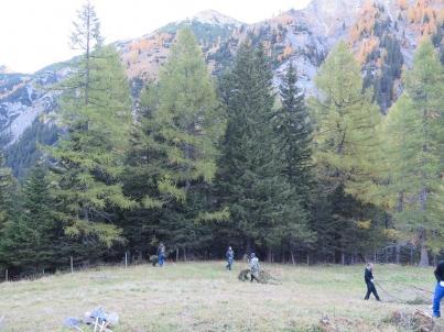 Waldräumen Valüna